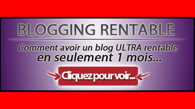 Blogging Rentable de Sylvain Wealth