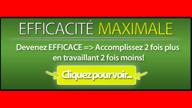 Efficacité Maximale de Sylvain Wealth