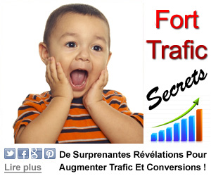 Augmenter Son Trafic